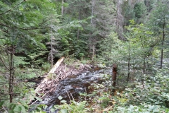 Otterslide Creek, Algonquin Park
