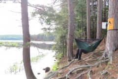 Hammock facing White Trout Lake, Algonquin Park