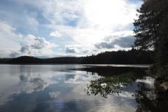 White Trout Lake, Algonquin Park