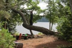 Campsite on McIntosh Lake, Algonquin Park