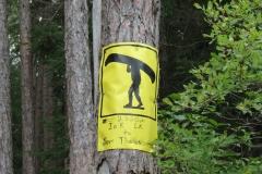 Ink Lake Portage, Algonquin Park